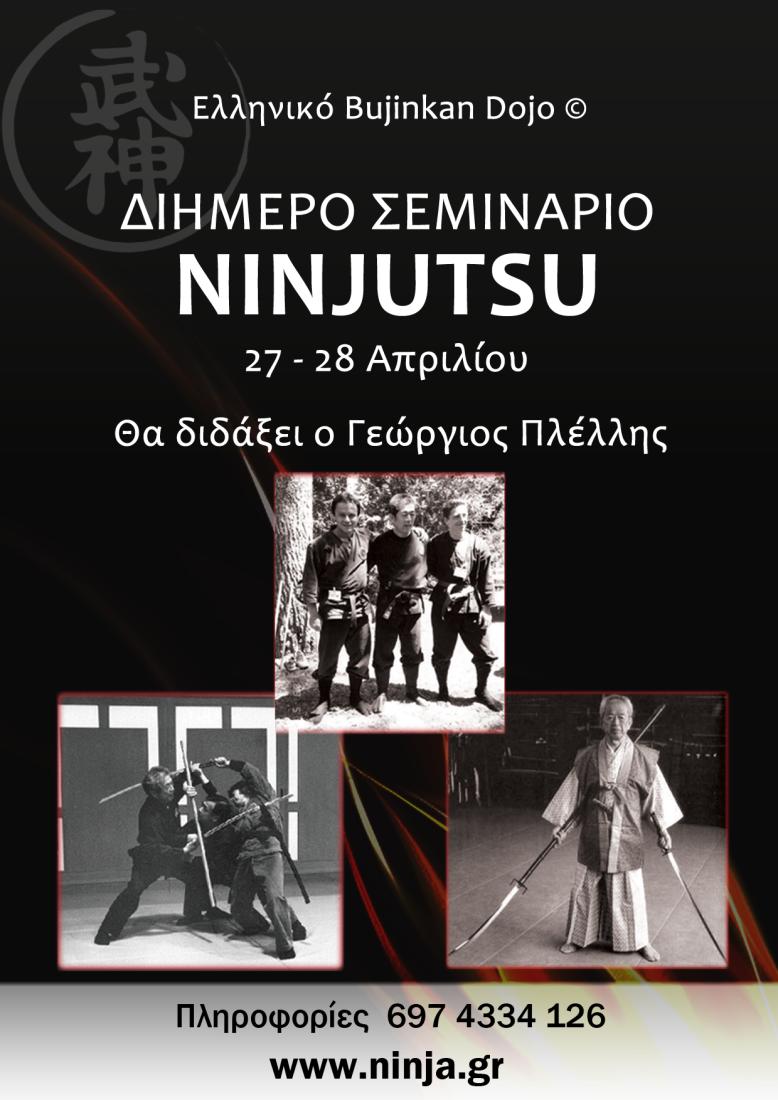 Hellenic Bujinkan Dojo Seminar Athens