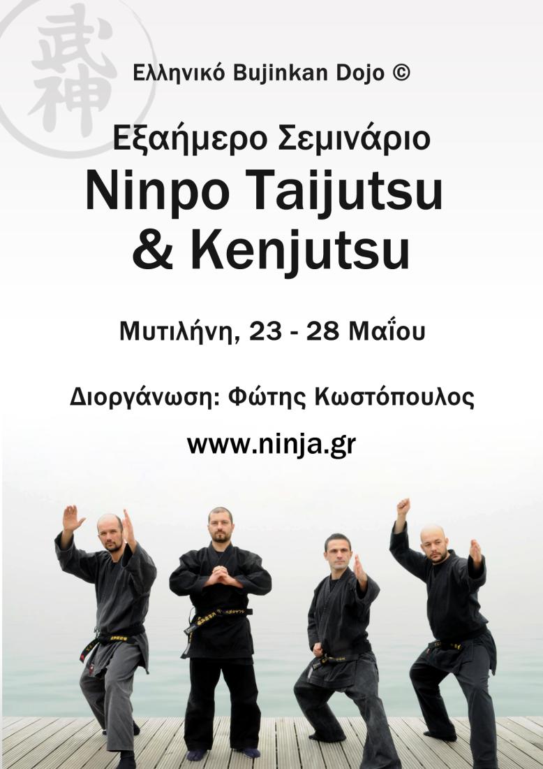 Hellenic Bujinkan Dojo Seminar Mytilene