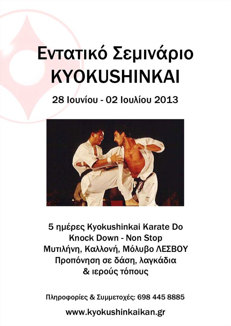 mytilene-kyokushin-2013